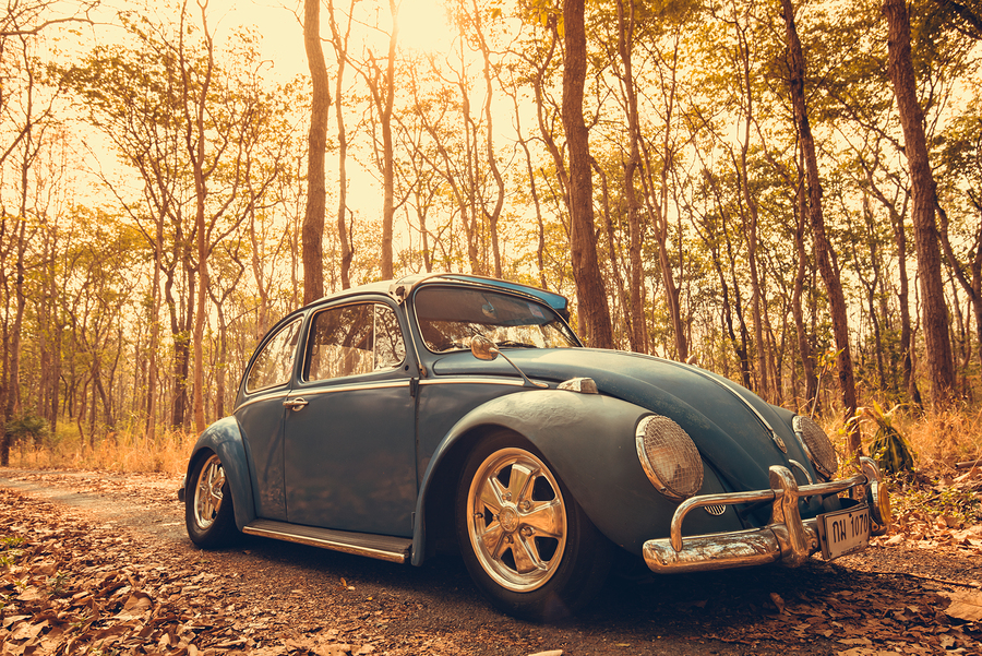 Nakhon Ratchasima THAILAND - MAY 1 : Volkswagen retro vintage car blue color in Forest Leaves Brown. on MAY 1 2016 in Nakhon Ratchasima Thailand. is Editorial