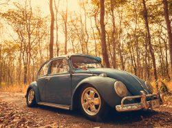 Nakhon Ratchasima THAILAND - MAY 1 : Volkswagen retro vintage car blue color in Forest Leaves Brown. on MAY 1 2016 in Nakhon Ratchasima Thailand. is Editorial